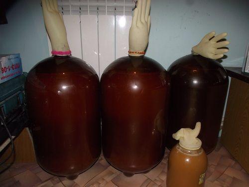 брожение яблочного вина