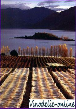 Виноделие в Новой Зеландии