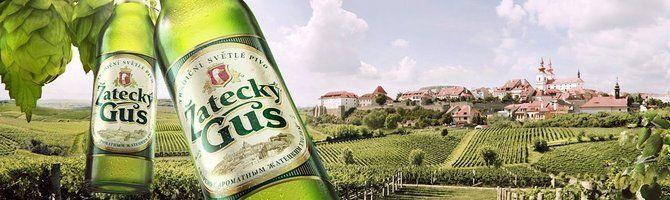 Вкусовые качества и происхождение пива жатецкий гусь
