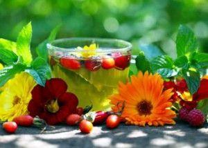 Женская трава для сбережения здоровья